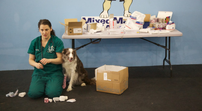 Hands On Canine First Aid & CPR w/Dr Eve Pugh DVM, CVA
