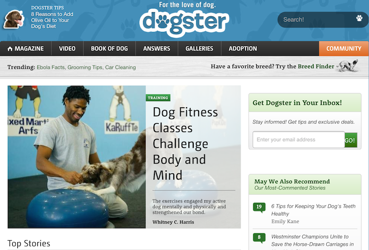 Dogster_dot_com_cropped